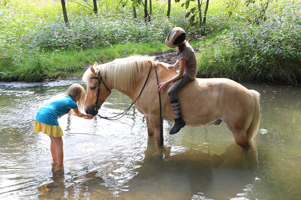 horse_kids