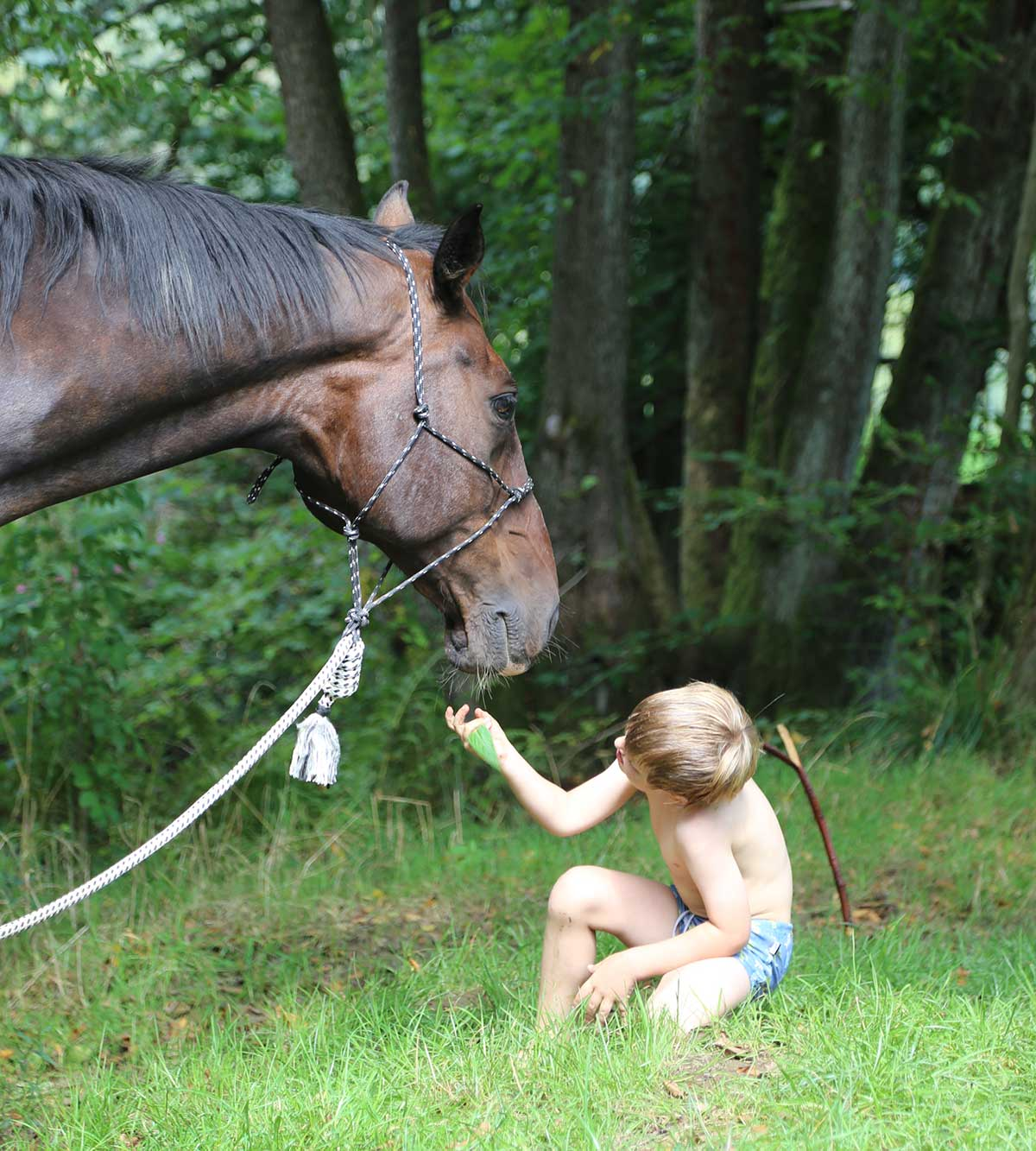 horse_kids1